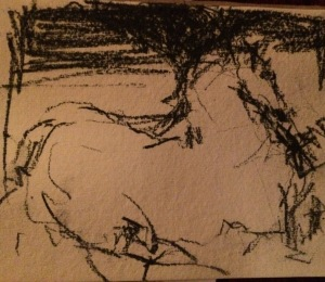 horse_15_11